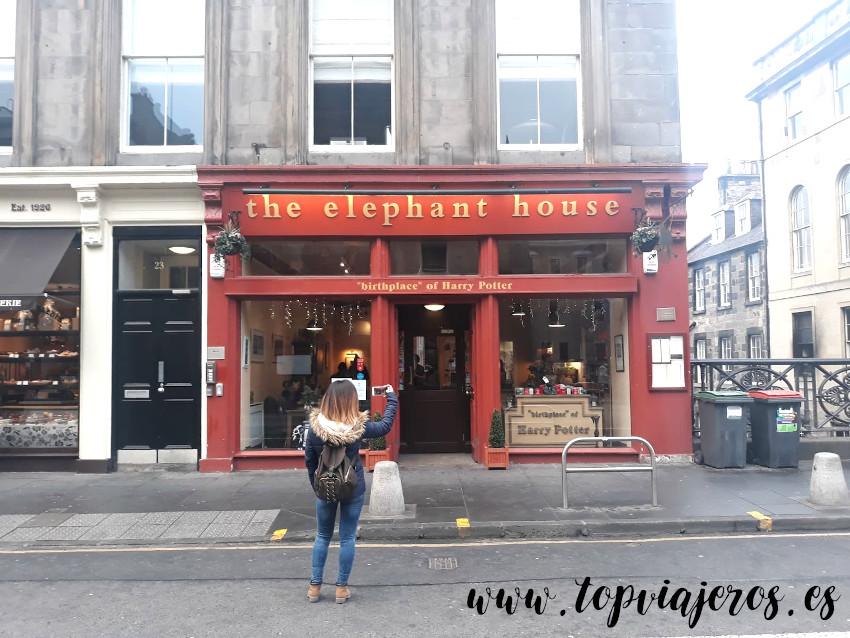 The elephant house, Edimburgo