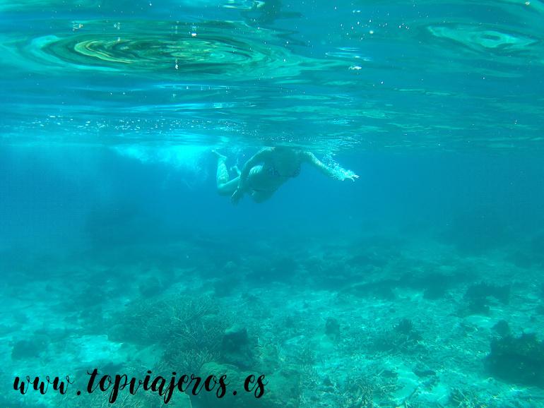 Snorkel Islas Perhentian