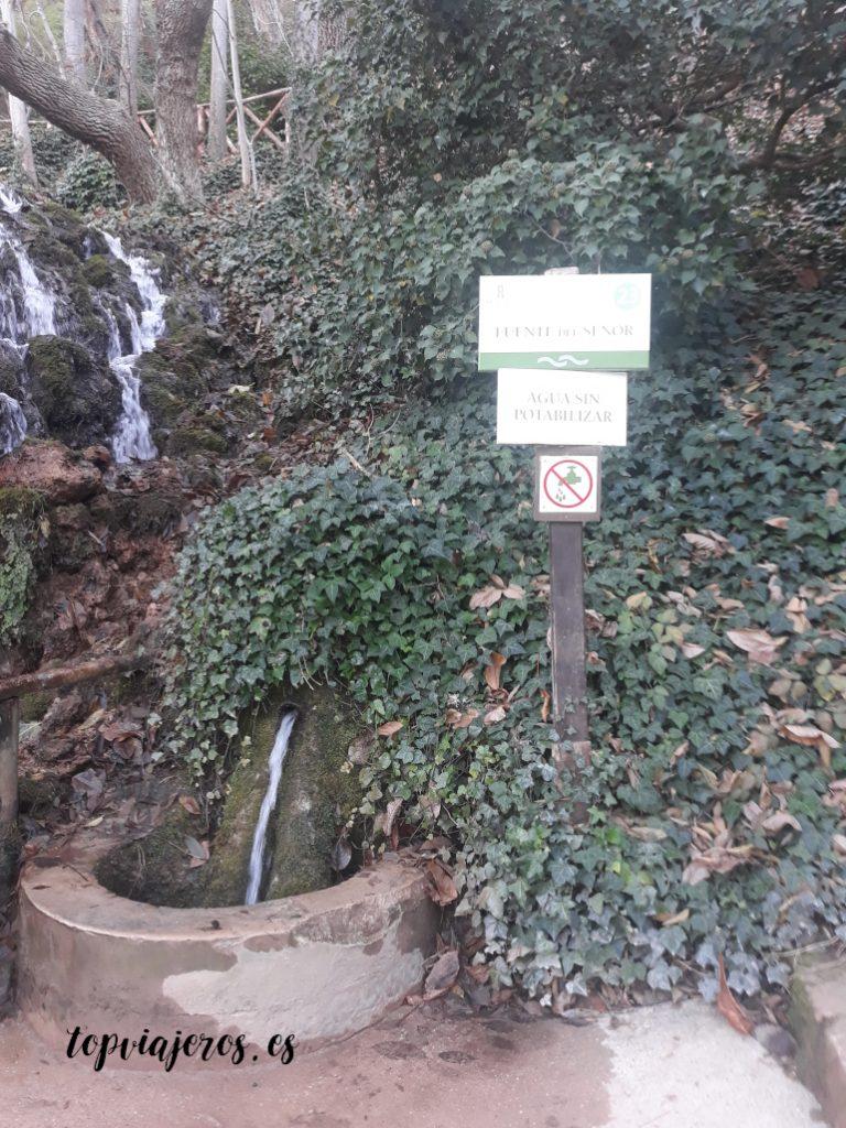 Fuente del Señor - Monasterio de Piedra (Zaragoza)
